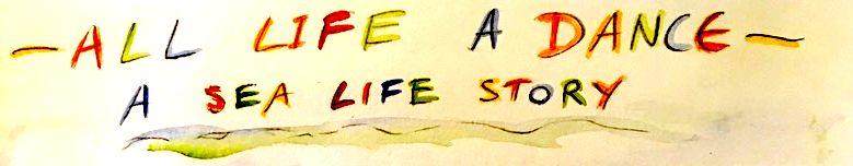 Drawn title from All life a dance : a sea life story
