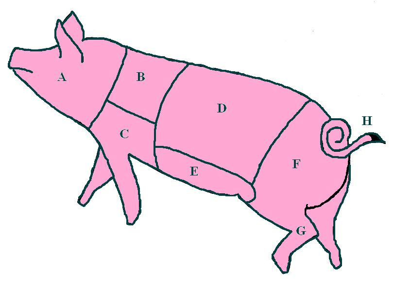 Diagram of a pig showing cuts of meat